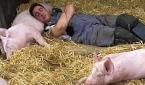 Richard_da_Costa_with pigs. (BBC © 2009)