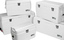 IGLOO Marine Coolers (10393767 © West Marine)
