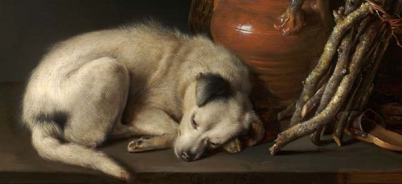 Gerrit Dou (1613–1675), Sleeping Dog (detail), 1650. Oil on panel, 6 ½ x 8 ½ inches. The Rose-Marie and Eijk van Otterloo Collection. Image courtesy Museum of Fine Arts, Boston